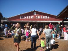 """""""Weekend at Gilmer County, Georgia's Apple Capital"""" 