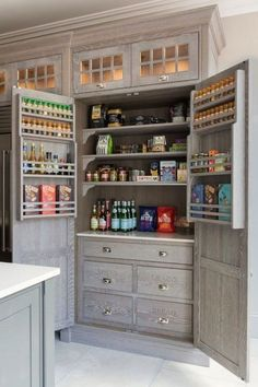 Choosing New Kitchen Cabinets If You Are Kitchen Remodeling Kitchen Pantry Design, Kitchen Pantry Cabinets, Kitchen Organization Pantry, Home Decor Kitchen, Rustic Kitchen, New Kitchen, Kitchen Designs, Pantry Ideas, Pantry Rack