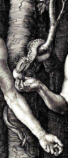 DÜRER, Albrecht (1471-1528)  Adam and Eve, detail 1504 Engraving Minneapolis Institute of Arts Ed. Orig.. Classic Art