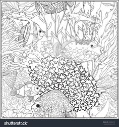 Pattern With Decorative Corals And Sea Or Aquarium Fish Coloring Book For Adult Older Children Outline Drawing Page