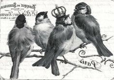 Free download- Postcard- Birds-crowned- Paris! Click- view- Save as!