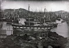 Historical Nonfiction Hundreds of boats sitting abandoned in the port of San…