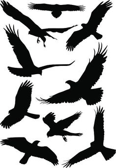 Silhouettes of wild birds in flight vector art illustration