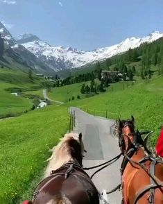 Beautiful carriage ride in the St. Moritz, Switzerland 🐴 🏔 Tag with whom you would like to do that 😍? Video by Beautiful Photos Of Nature, Beautiful Places To Travel, Nature Pictures, Romantic Pictures, Nature Photography, Travel Photography, Destination Voyage, Vacation Trips, Travel Around The World