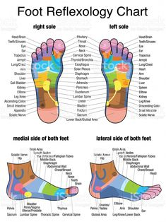 Seeking Healthy Tips On How To Get A Good Massage? Check This Out! It is easier than you might think to give a really good massage. You could educate yourself with an expensive massage therapy course, or you could just rea Health And Wellness, Health Fitness, Health Tips, Health Benefits, Fitness Gifts, Health Memes, Foot Chart, Reflexology Massage, Foot Reflexology Chart