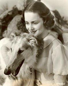 Olivia de Havilland - 1916-2013 - Actrice américaine d'origine anglaise - Soeur de Joan Fontaine - En photo avec son lévrier.