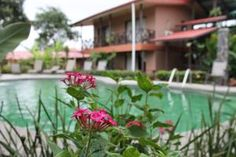 Offering a garden, wooden terrace and an outdoor swimming pool, Hotel Bijagua is located 2 km from Baldi Hot Springs and 3 km from La Fortuna Waterfalls.