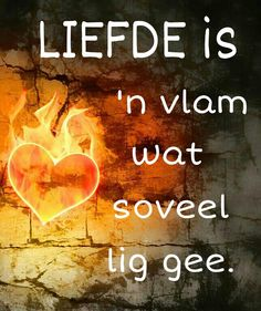 Afrikaans Afrikaans Quotes, Proverbs Quotes, My Land, Love And Marriage, Cute Quotes, True Stories, Things To Think About, Qoutes, First Love