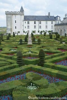 Villandry: Such beautiful beans and lettuces!