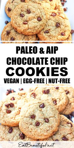 Just like the best bakery chocolate chip cookies we all grew up with, Paleo Chocolate Chip Cookies are crispy around the edges, tender in the middle and packed with melty chocolate chips! Paleo, AIP, Gluten-free and Vegan. This recipe is grain-free, dairy-free, egg-free and nut-free. | Eat Beautiful recipes || paleo aip chocolate chip cookies | vegan chocolate chip cookies | #paleo #aip #vegan #chocolatechip #cookies Paleo Dessert, Gluten Free Desserts, Dessert Recipes, Whole Food Recipes, Paleo Chocolate Chip Cookies, Paleo Cookies, Fast Cookies Recipe, Carob Chips, Best Bakery