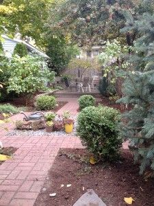 We are currently scheduling our fall pruning routes. Pruning is necessary to maintain a healthy, vigorous plant. Pruning can prevent a plant from overgrowing its space in the landscape and eliminates the need for drastic cutting of crowded, overgrown plants. It can allow for growth of plants under or adjacent to the pruned plant. Rejuvenation services can encourage plants vigor through the remov…