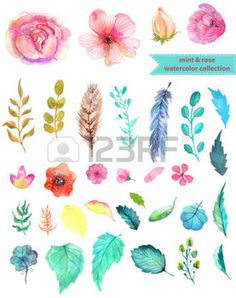 floral branch: Watercolor floral collection, mint and rose for beautiful design