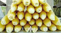 How to Freeze Corn: There are a lot of recipes for freezing corn (most, in fact) that will have you boil the cobs first and THEN cut the corn off. That method is perfectly fine but for me I like to do it this way because: 1) I think it's easier to handle the cobs when they are not piping HOT from just being boiled  2.) I like to add a little salt and sugar to my corn when cooking.