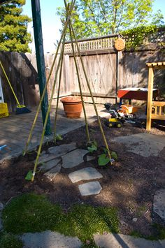 Gardening for kids...green bean teepee.  Before and after.