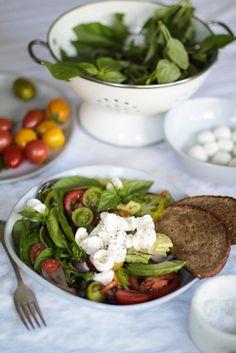 Beautiful caprice salad bowl with tomatoes, basil, buffalo mozzarella, avocado and roasted shallots