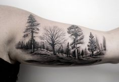 Black and Gray Ink Forest by Turan