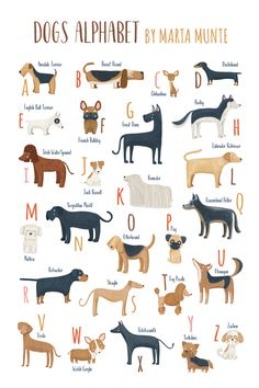Dogs alphabet for dog lovers, Printable Dog alphabet poster, ABC dogs breeds, A to Z dogs alphabet, printable dogs wall art. Dog Artwork, Dog Poster, Dog Illustration, Animal Drawings, Dog Breeds, Cute Dogs, Dog Lovers, Dog Cat, Cute Animals