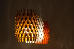 Banksia is a series of floor, table and pendant lights developed from an investigation into Australian native flora.