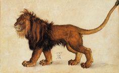 Albrecht Dürer - Lion, 1521, Pen and watercolour. 177 x 288 mm, Vienna, Albertina