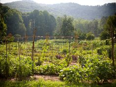 Condé Nast Traveler readers rate Tennessee's own Blackberry Farm the #12 top hotel in the south!