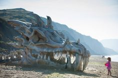 Dragon skull on Charmouth beach, Dorset.  Beachgoers in Dorset were surprised to come across a skull the size of a London bus which suddenly appeared on Charmouth beach, part of Dorset's Jurassic coast, famous for its dinosaur fossils.  Alas, it's not a real dragon skull—it's part of an ad from HBO's epic Game of Thrones series.