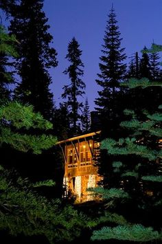 Wuksachi Lodge, Sequoia National Park. Rates from USD93