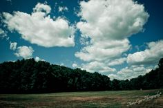 dream of summer field | Flickr - Photo Sharing! ©ThompCyn Photography - Cynthia Harris http://www.thompcynphotography.com