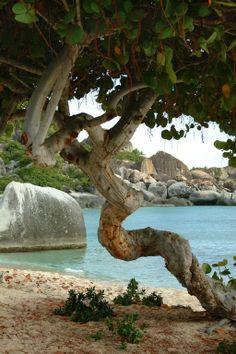 The Baths Vacation Rental - VRBO 471953 - 3 BR Virgin Gorda Villa in British Virgin Islands BVI, 3 Minute Walk to Spring Bay, Walk/Snorkel t...