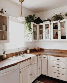 no crown on cabinets, knives in cupboard. plants on top of cabinets