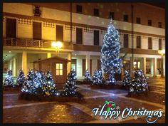 """Foto in concorso di Federica L. """"Happy Christmas"""" (2)"""