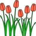 La primavera - Los pimpollos