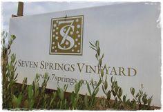 Seven Springs Vineyards in the Hemel en Aarde Valley. South African Wine, Seven Springs, Pinot Noir, Good Times, Wines, Vineyard, Place Card Holders, Blog, Vine Yard