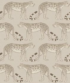 Cole & Son The Ardmore Collection Leopard Walk 109/2012 Stone Wallpaper, Wallpaper Decor, Wallpaper Online, Wallpaper Samples, Print Wallpaper, Wallpaper Roll, Bathroom Wallpaper, Beautiful Wallpaper, Leopard Wallpaper