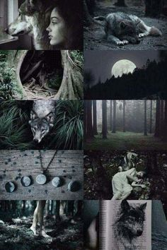wolf witch aesthetic