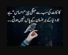 urdu poetry urdu quotes urdu quotes about urdu Urdu Quotes, Inspirational Quotes In Urdu, Best Quotes In Urdu, Poetry Quotes In Urdu, Love Poetry Urdu, Quotations, Islamic Quotes, Best Success Quotes, Sucess Quotes