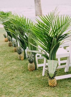 Highlight a tropical wedding theme with these pineapple and palm leaf aisle accents.