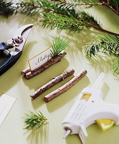 Great idea for placecards on the tables, only with ferns/leatherleaf instead of spruce. Mini birds as well? Or nests?