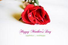 Una rosa per la festa della mamma. #motherday #MothersDay