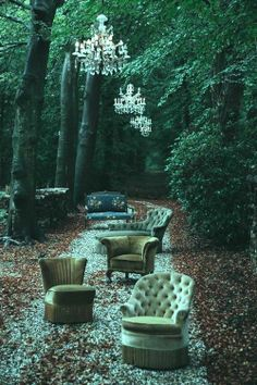 Scotch in the Woods Party Kulissen, Wonderland, Outdoor Seating, Outdoor Decor, Outdoor Lounge, Outdoor Ideas, Indoor Outdoor, Turbulence Deco, Belle Photo