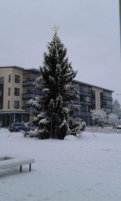 Kangasalan torin joulupuu