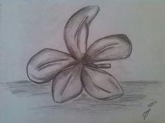 Flower drawn by Jonsu Ziegler