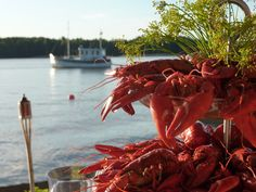 A crayfish party is a traditional summertime eating and drinking celebration in the Nordic countries. The tradition originated in Sweden, where a crayfish party is called a kräftskiva.