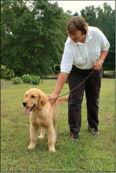 Tips for training 3-5 month old puppies