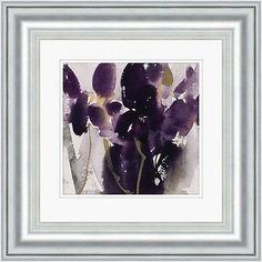 Framed Flower Prints David Ross Iris Lilium Paintings Watercolours Pictures