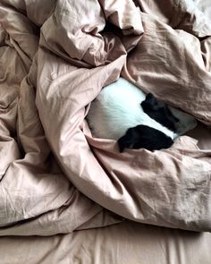 """200 gilla-markeringar, 8 kommentarer - M i d n a t t (@midnatt.official) på Instagram: """"The coziness is real   Wilted single duvet and Wilted fitted sheet."""""""