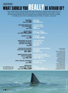 """I hate when people are like """"sharks are so scary!"""" I'm like bitch. You have more chances of dying in a car crash than dying from a shark bite."""