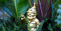 Our cheeky naughty gnome, hiding in the foliage.