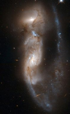 #NGC6621 | NGC 6621/2 (VV 247, Arp 81) is a strongly interacting pair of galaxies, seen about 100 million years after their closest approach. It consists of NGC 6621 (to the left) and NGC 6622 (to the right). NGC 6621 is the larger of the two, and is a very disturbed spiral galaxy. The encounter has pulled a long tail out of NGC 6621 that has now wrapped behind its body. The collision has also triggered extensive star formation between the two galaxies.