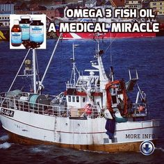 Omega 3 Fish Oil, Blood Vessels, Reduce Inflammation, Blood Sugar, Cholesterol, How To Introduce Yourself, Your Pet, Relax, Author