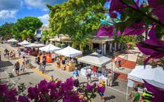 Street Smart: Third Street South in Naples - Opal Unpacked Fresh Roasted Coffee Beans, Naples Pier, Edgewater Beach, Get Away Today, Night Gallery, Third Street, Marco Island, Grass Fed Beef, Beach Hotels